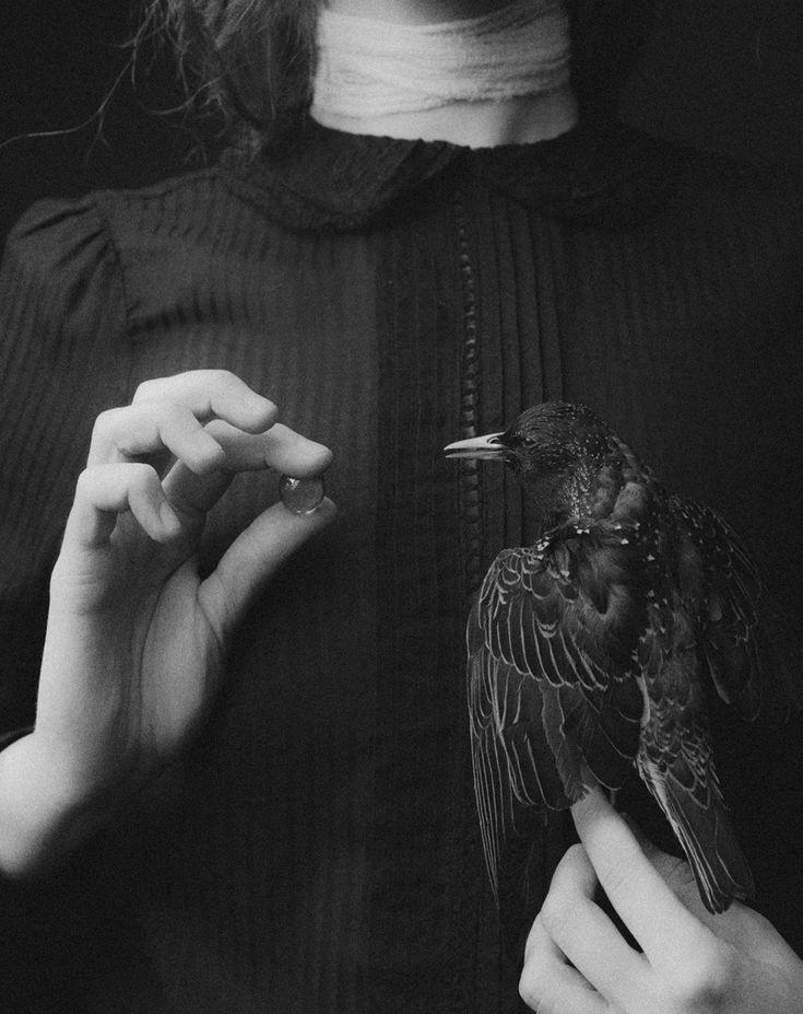 laura makabresku : Photo