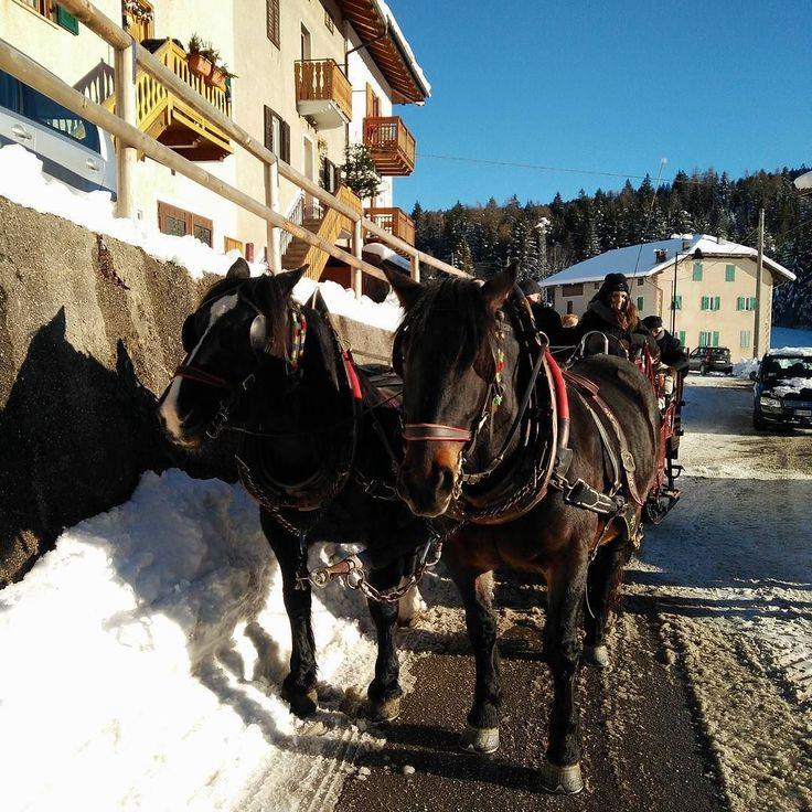 E oggi giro in carrozza per i #presepi di #ruffrè! #valdinon #mybelsoggiorno #trentinowow @coflari_page @_coflari_ranch