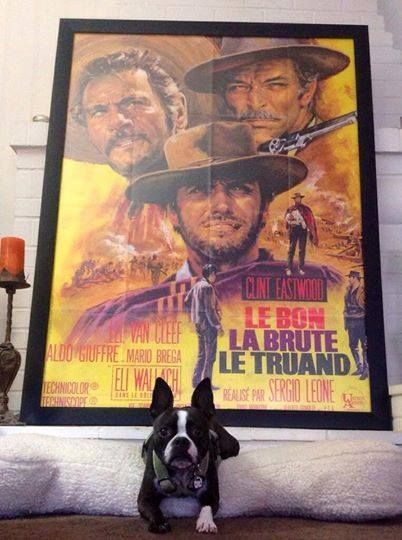 "This is a French Grande Poster in one of our Wide Border Cinema Style Frames. French Grande Posters are always listed at 47"" x 63"" but it has been our experience that most French Grande Posters vary in size such as this one which is actually 46"" x 61.5"" So always make sure you measure your posters before ordering. We can custom cut any size frame!"