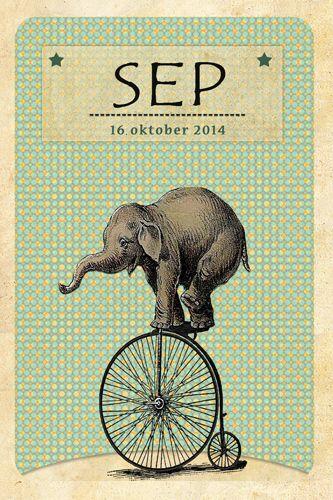 Geboortekaartje Sep - voorkant - Pimpelpluis - https://www.facebook.com/pages/Pimpelpluis/188675421305550?ref=hl (# vintage - olifant - olifantje - fiets - circus - sterren - retro - tekstontwerp - layout - origineel)