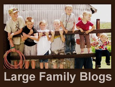 Blogs for Large Families