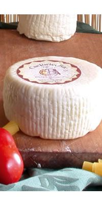 Cacioricotta goat. It's born of the ancient demand of the shepherd of mixed flocks to be able caseificare also when, in absence of milk of the sheep in the hot season, the only resource was that of goat. Grater product for excellence and in the last few years is affirming also as cheeses from table. The Cacioricotta, produced with the only one goat's milk, follows a type of manufacturing which has handed down the casearia tradition of Lucania.