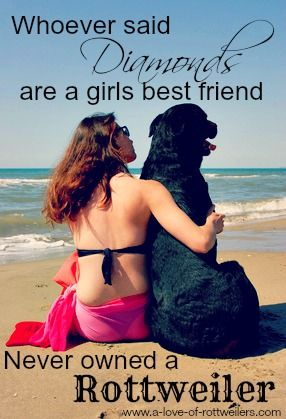 Your Rottweiler is your best friend, cheerleader, guardian and snuggle-buddy. Who needs diamonds?