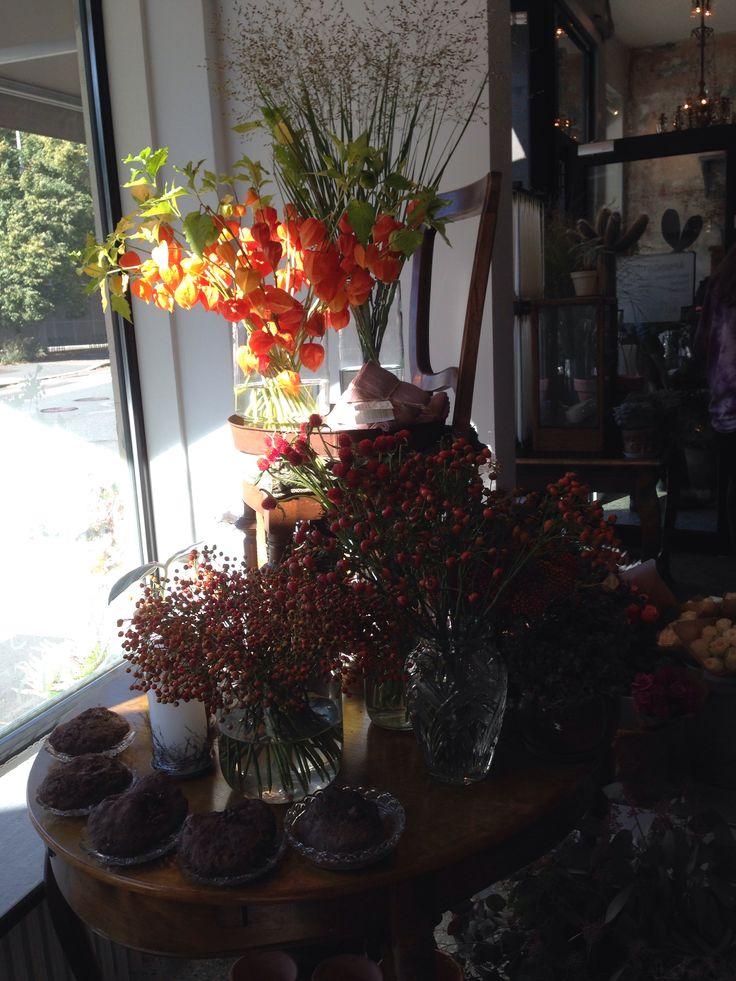 Frøken Flood Blomster