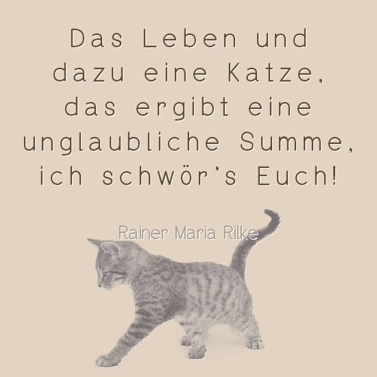 Das Leben und dazu eine Katze,   das ergibt eine unglaubliche Summe,  ich schwör`s Euch!  Rainer Maria Rilke