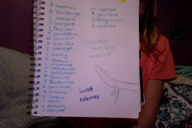 Wolf names (Sorry the camera was bad)