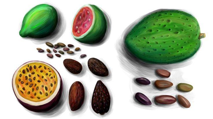 #Naturkosmetik_Rezept Cellulite Salbe selber machen  Das Non-Plus-Ultra der veganen Naturkosmetik. Bacuri-Butter + Andiroba-Öl + Buriti-Öl + Mulateiro-Extrakt  #amazonas #rohstoffe #samuria