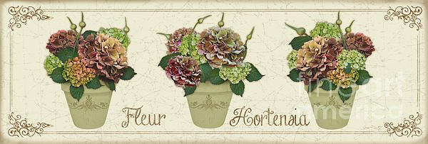 New print available on plout-gallery.artistwebsites.com! - 'Fleur Hortensia-jp3016' by Jean Plout - http://plout-gallery.artistwebsites.com/featured/fleur-hortensia-jp3016-jean-plout.html