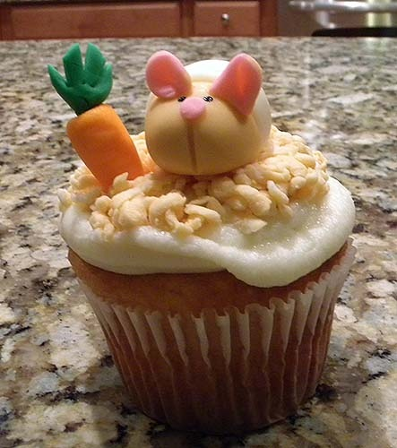 90 Best Hamsters Images On Pinterest