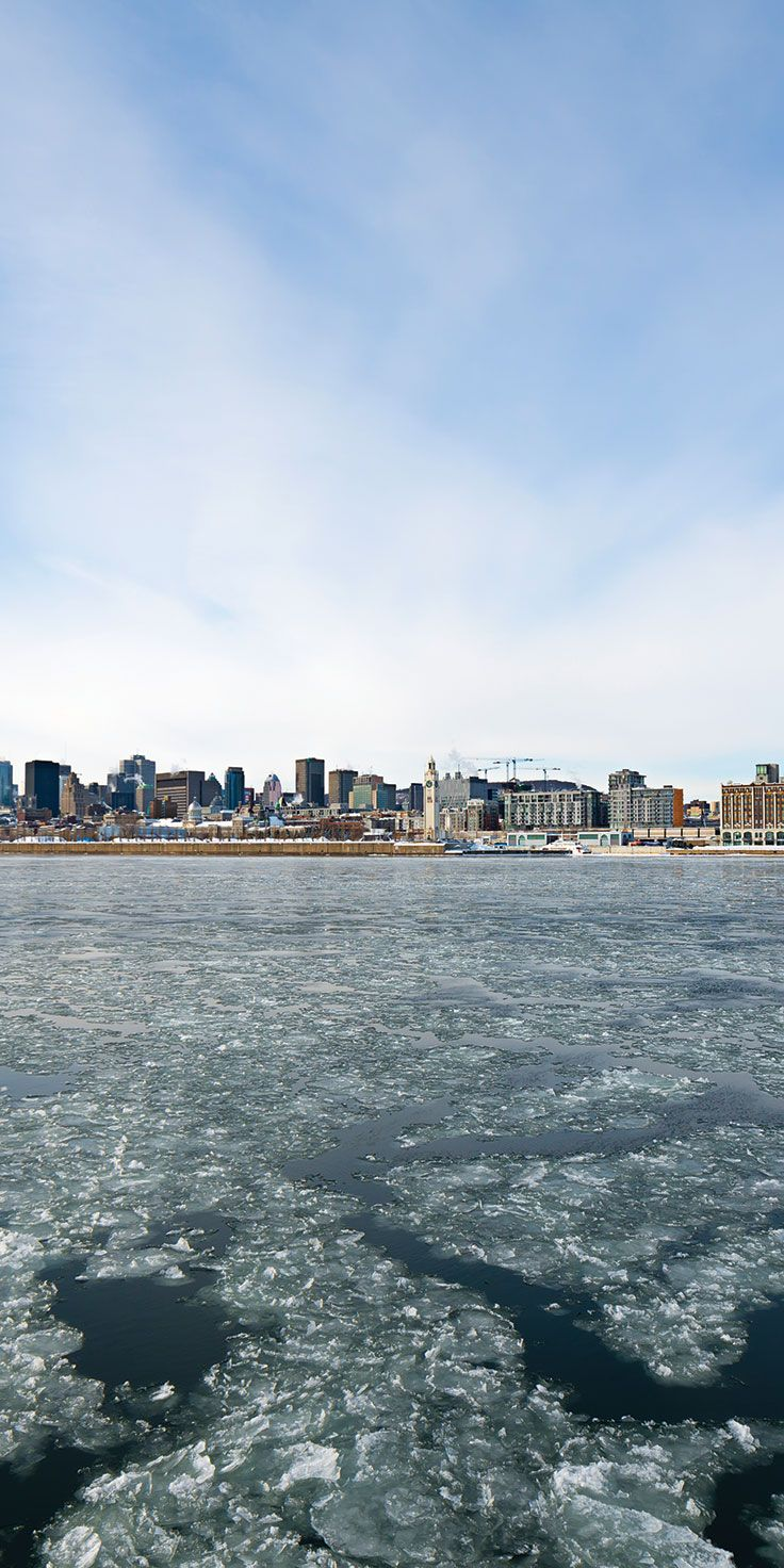 Montreal city from afar - by Lauren Bath