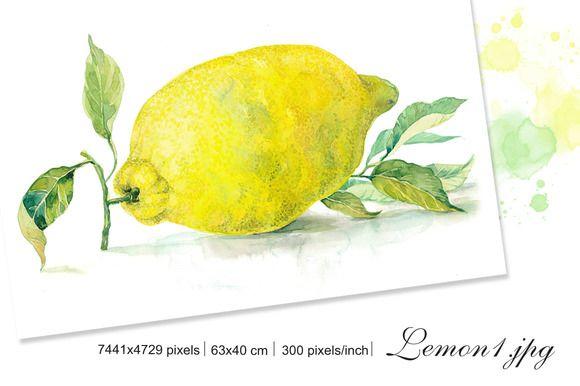 "Set Watercolor ""Lemons"" by Marina.Markizova on @creativemarket"
