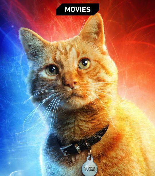 Captain Marvel Movie 2019 Trailer Release Date Cast Poster Marvel Captain Marvel Marvel Characters Marvel Posters