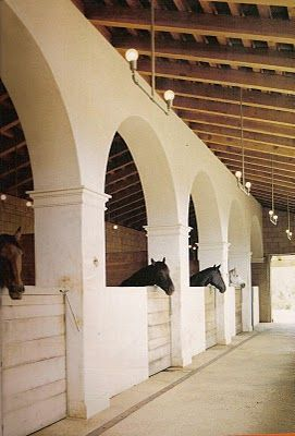 Archways and raised ceilings allow for ventilation and interaction.  5-8 ft. 3-wall structure for box stalls  Open semi-shotgun hallway  Opposing end could open to small outside space