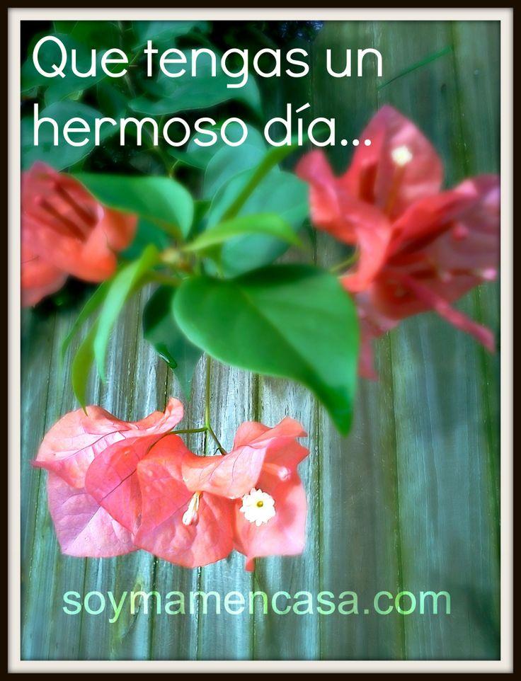 #buenos #dias #flores #good #morning  www.soymamaencasa.com