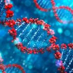genome of pneumonia bacteria