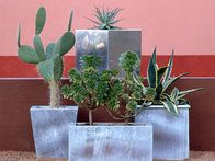 Decorative plant containers come in a variety of materials and styles, including metallic containers used for architectural foliage giving a contemporary look to a backyard space.