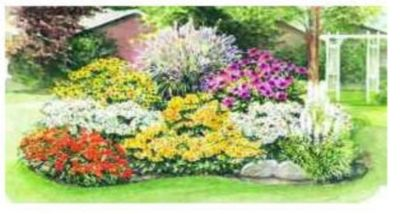 17 Best images about Drought Tolerant Plants - Zone 4 on ...