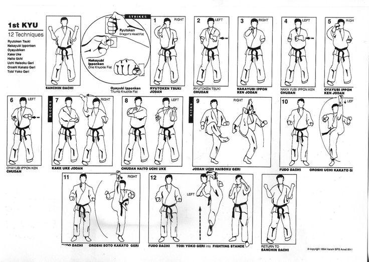 PASSAGES DE GRADES - D.S.H. TEAM