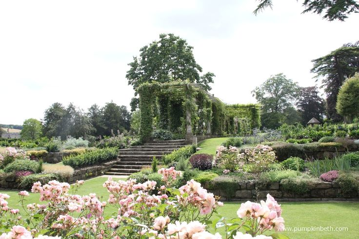 Roses feature in The Edwardian Pergola and Sunken Garden at West Dean Gardens.  This is a super special garden to visit.