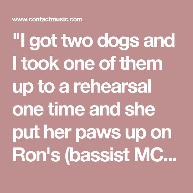 """""""I got two dogs and I took one of them up to a rehearsal one time and she put her paws up on Ron's (bassist MCGovney) car. And James kicked it right in the side. I was like, 'What did you do? It's a dog, it's what they do. You don't kick animals.' ..."""""""
