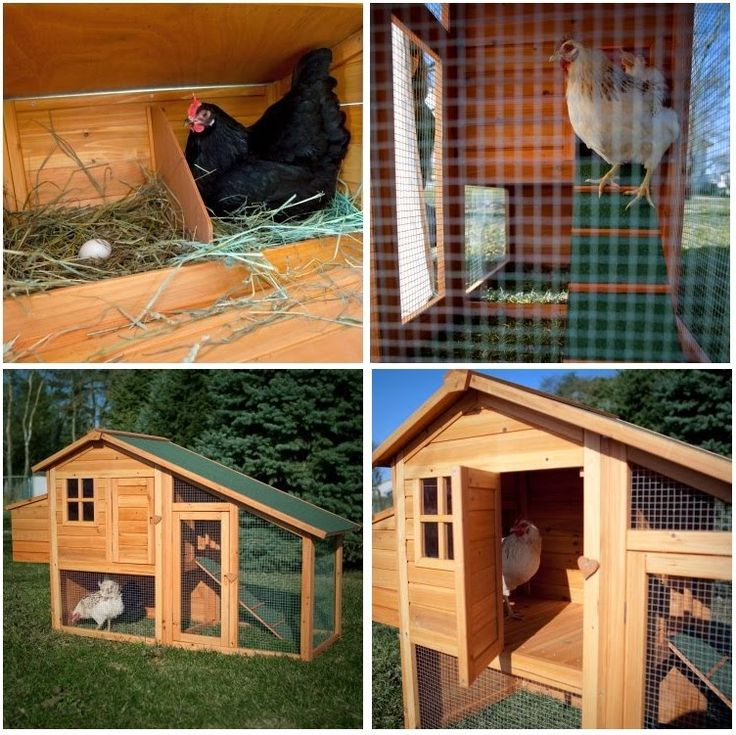 Chicken Coop- would love to put wheels on this to make it portable