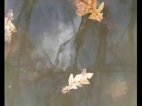 Autumn Song by Poitín. A melancholy and sweet little song about life, the universe and everything.