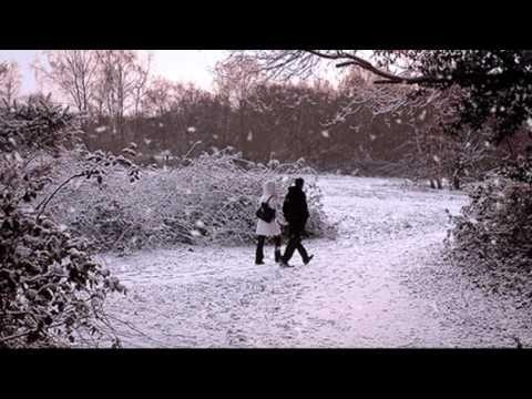 Blue Christmas sung by Elvis Presley (HD)