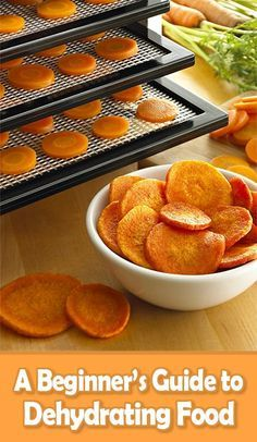 There are many benefits that come along with your food dehydrator. Follow our beginner's guide to dehydrating food and you'll be a pro in no time!