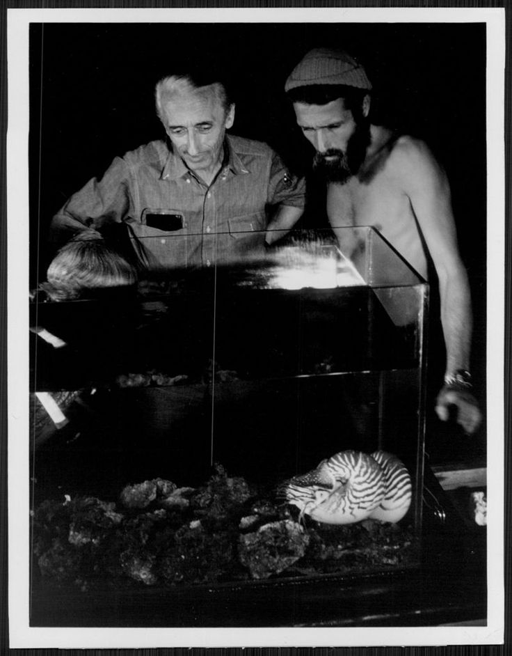 1973 Jacques Cousteau and Philippe Cousteau Press Photo | eBay