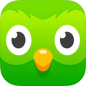 Duolingo by Duolingo Learning italian, Learn french