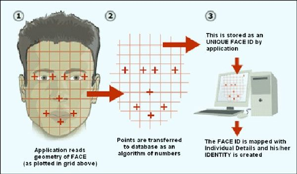 A Diagram Illustrating Geometrical Approach to Facial