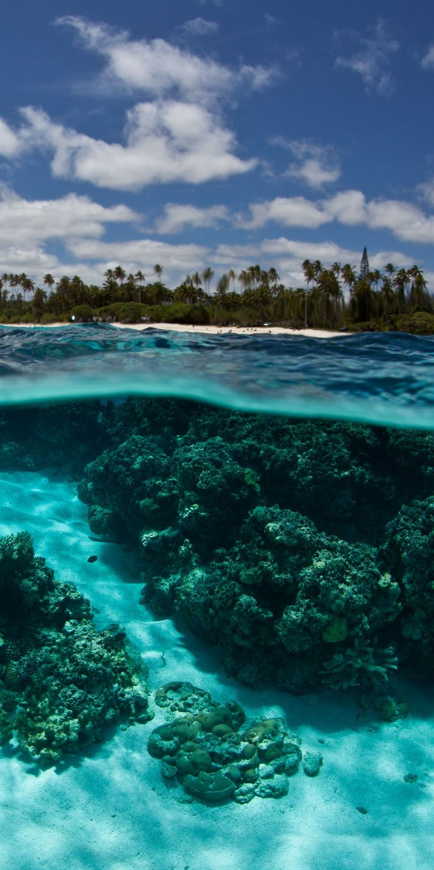 Isle de Mare near New-Caledonia