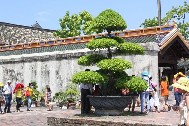 Hué é um dos centros culturais e históricos mais importantes do Vietname e é conhecida pela sua tradição no domínio do pensamento intelectual e da devoção budista. A norte do rio do Perfume, encontra-se a cidadela, enquanto a sul existem muitos pagodes e túmulos reais. Classificada como Património Mundial em 1993, a Cidadelade Hué foi …