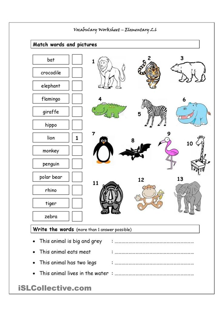 vocabulary matching worksheet elementary 2 6 wild animals english for children. Black Bedroom Furniture Sets. Home Design Ideas