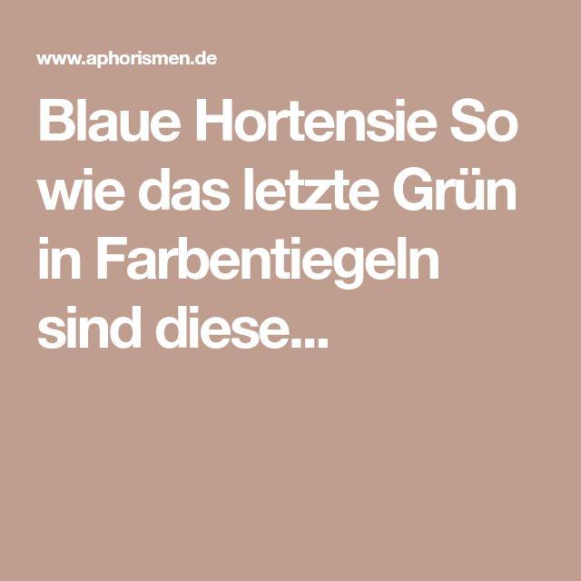 Blaue Hortensie So wie das letzte Grün in Farbentiegeln sind diese...