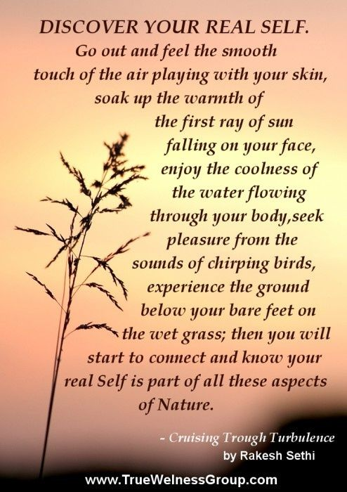 410c246a7134608e30086d2637eb6c61--peaceful-warrior-quotes-inner-peace-quotes.jpg