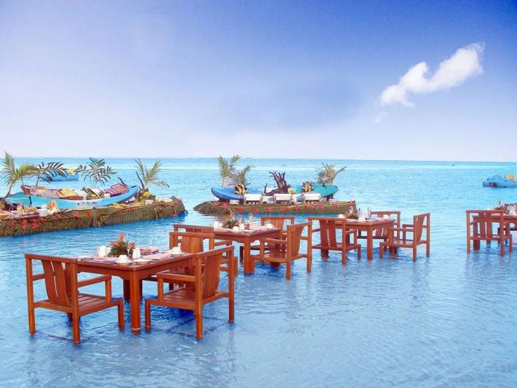 Warwick Resort - Fiji. How often can you say you dined with your feet in the water especially in this gorgeous destination? ASPEN CREEK TRAVEL - karen@aspencreektravel.com