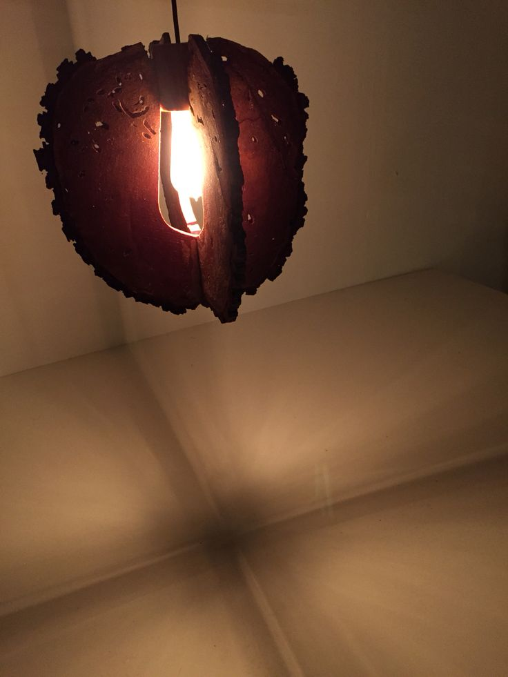 Wood lamp new model