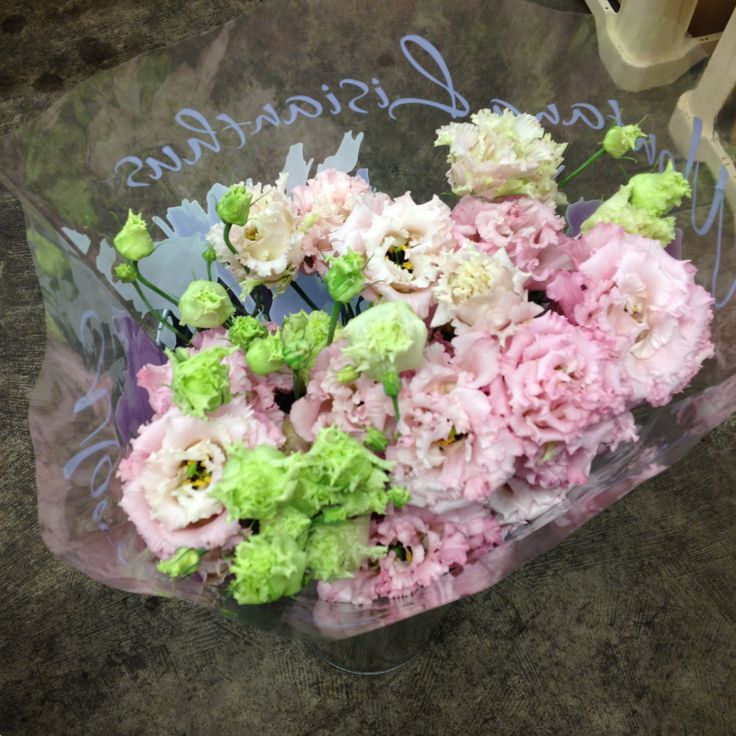 Lisianthus Double called 'Arena Pink' sold in bunches of 10 stems from The Flowermonger.