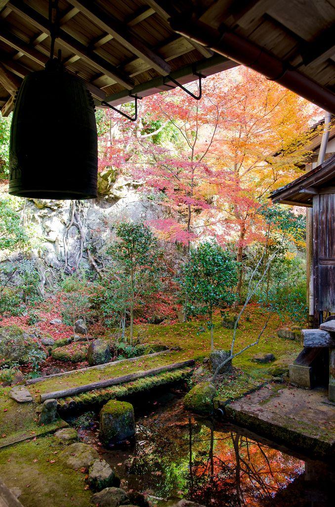 """wanderthewood: """" Saimyō-ji Temple, Kyoto, Japan by Clione Limacina """""""