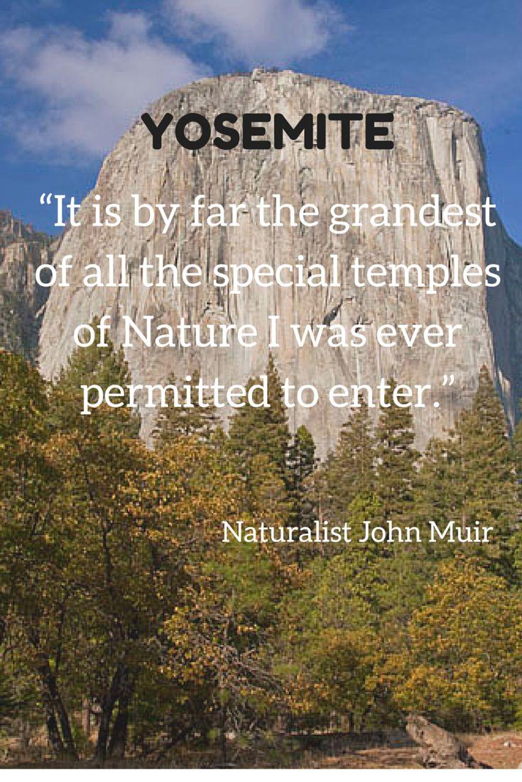 1000 Ideas About John Muir Lodge On Pinterest Mist