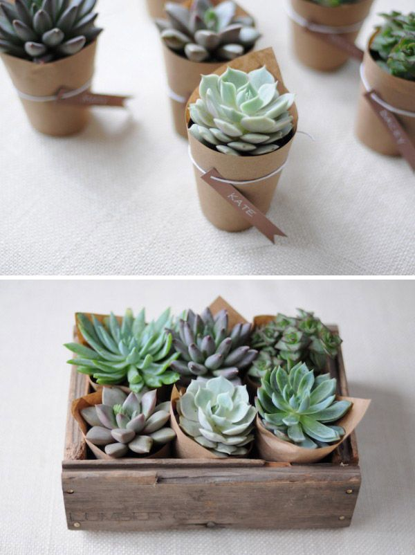Party favor or hostess gift idea: wrap small plant pots with kraft ...