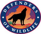 footwear discount Help Prevent the Extinction of Mexican Gray Wolves    Defenders of Wildlife