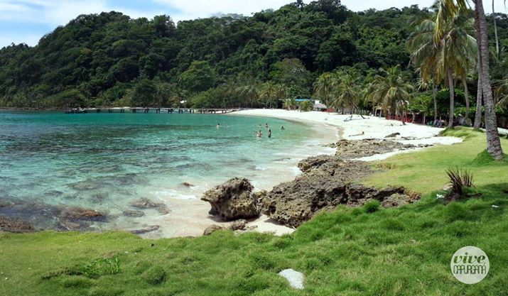 En Capurganá encontrarás la gran variedad de arrecifes de coral vírgenes que aún quedan en el mundo, sin duda alguna uno de sus atractivos turísticos que generan una experiencia más natural.