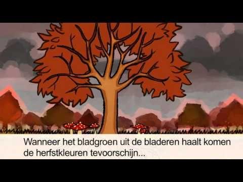 Klokhuis, waarom veranderen bomen?