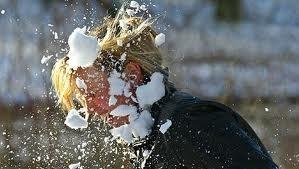 Het sneeuwt! Tijd voor een sneeuwballengevecht - Plazilla.com