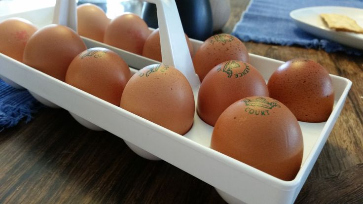 Eggs! Always have eggs! They contain an incredible amount of nutrients, and have earned the nickname of nature's multivitamin for a reason! They are versatile, and have proven health benefits. A most eggsellent staple food!