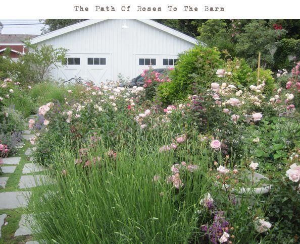 pathofroses: Gardens Ideas, Secret Gardens, Enchanted Gardens, Rachel Ashwel Gardens, Gardens Paths, Ashwel Shabby, Ashwel Backyard, Rose Rachel Ashwel, Ashwel Studios