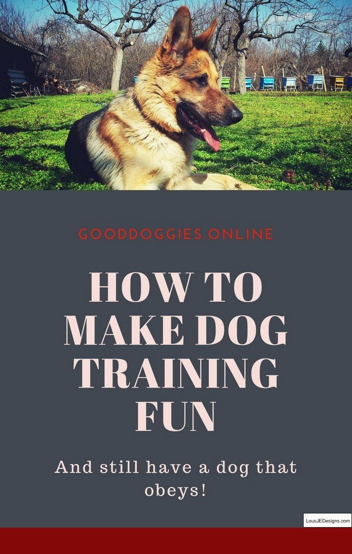 How To Train Your Dog To Attack Command And Pics Of How To Train