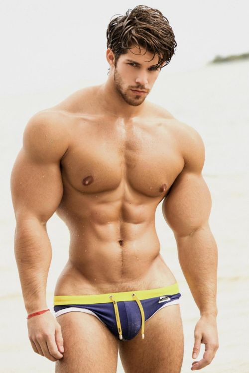 car sex ravenna gay bodybuilder escort